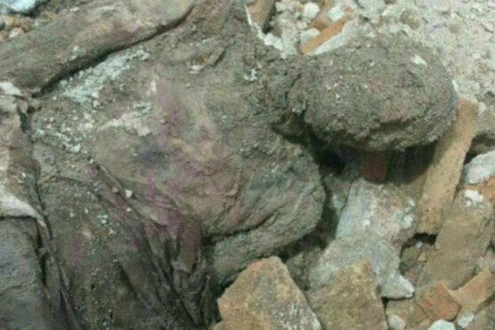 اگر جسد کشف شده مومیایی باشد، رضا شاه است
