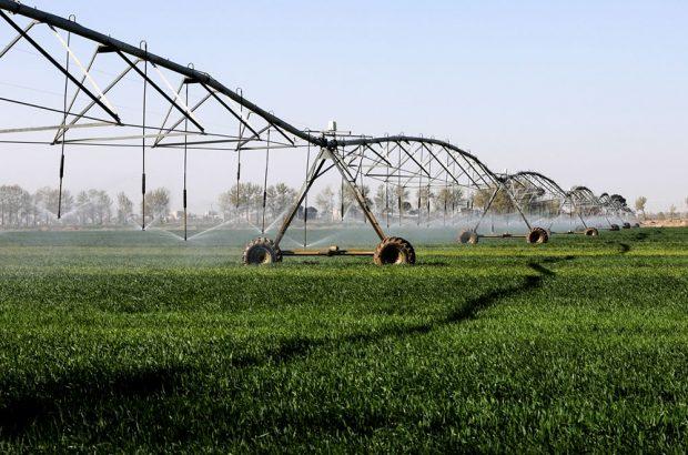 بهره برداری از ۹ پروژه کشاورزی و دامپروری در سیرجان