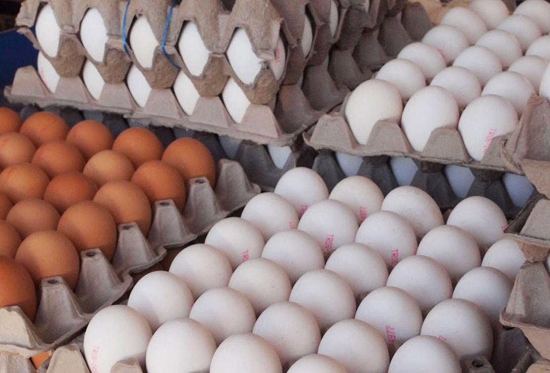 کمبود تخممرغ در استان کرمان نداریم/پیشبینی افزایش قیمت تخممرغ در پاییز