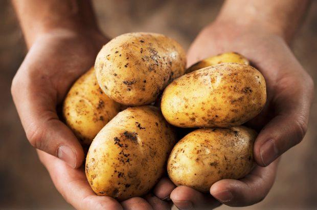 سیب زمینی با رشد ۳۶۳ درصدی در صدر گرانی