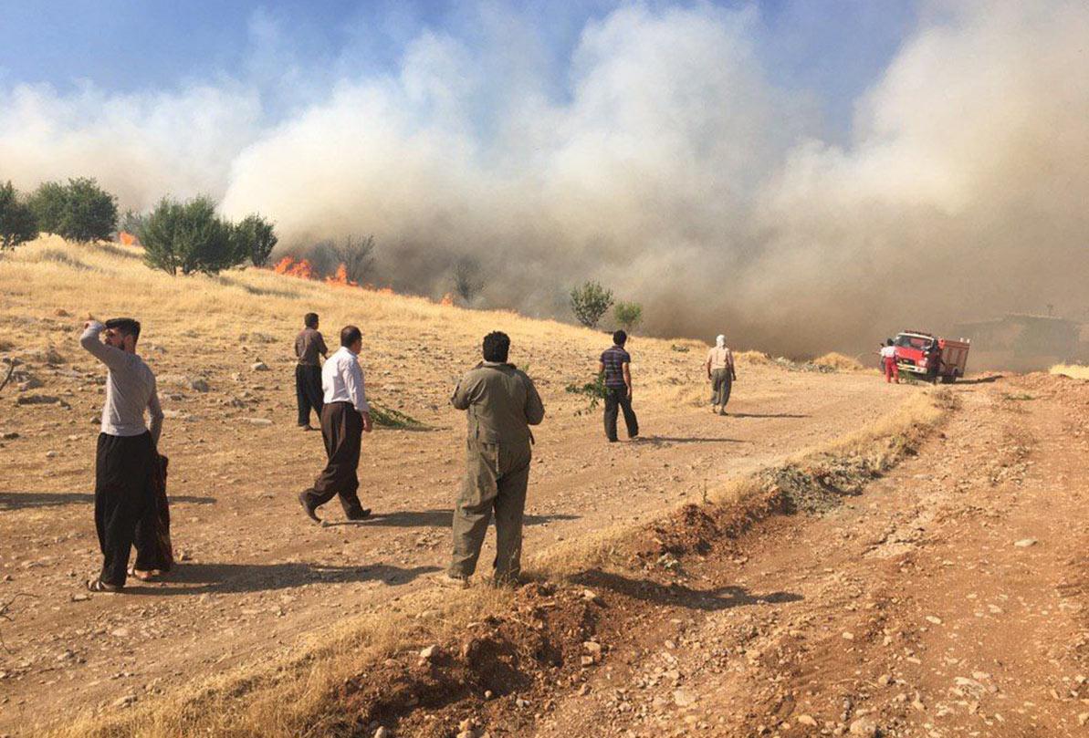 آتشسوزی مراتع روستای باغبزم شهرستان بردسیر