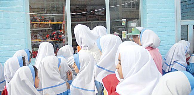 اجباری شدن دستورالعمل پایگاه تغذیه سلامت در تمام مدارس استان کرمان