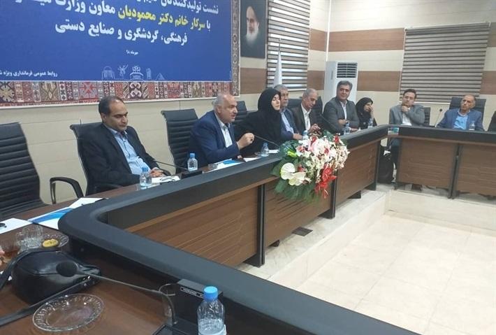 حضور معاون وزیر میراث فرهنگی در سیرجان