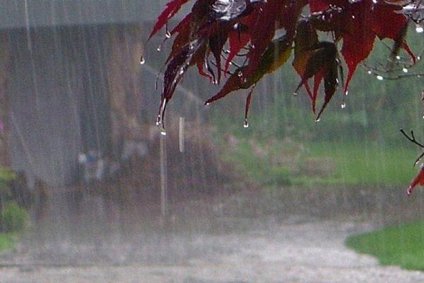 ۱۰ میلیمتر بارندگی تا ساعت ۶ صبح امروز در سیرجان