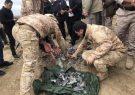 حملات موشکی ایران خسارتی نداشته است