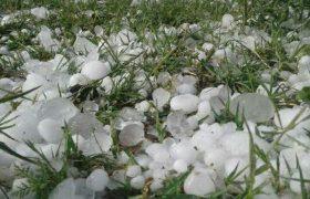 خسارت ۵۹ میلیارد تومانی به بخش کشاورزی سیرجان