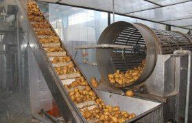 رونق کشاورزی کرمان روزنهای رو به امید