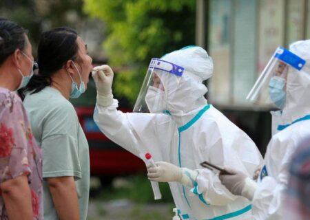 ویروس کرونا احتمالا ۲۰ تا ۵۰ سال پیش مخفی شده بود
